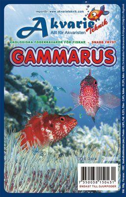 Gammarus 100g