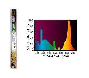 Aqua-Glo 36w - 105cm
