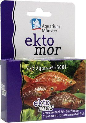 Aquarium Münster - Ektomor