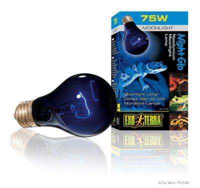 Exo Terra Night Glo 75W