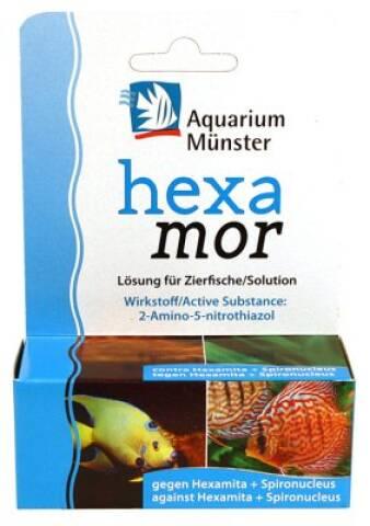 Aquarium Münster - Hexamor 20ml
