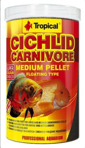Tropical Cichlid Carnivore M 1L