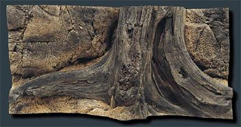 Back to Nature Mini Amazonas 100x50cm